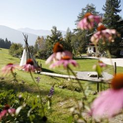 Gartenansicht Frühling © Bio Hotel Grafenast