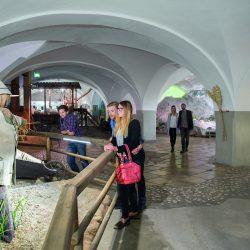 Ausstellung Hausbrauerei Stiegl Brauerei @ Stiegl Brauwelt